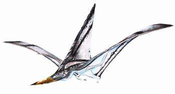 ニクトサウルス
