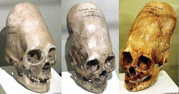 マヤ人の頭は平らに変形していた
