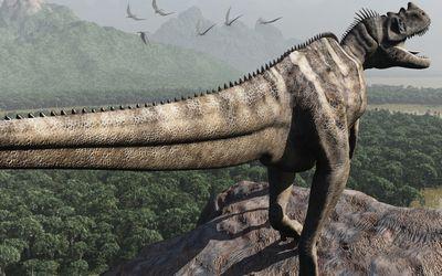 ケラトサウルス・ナシコルニス