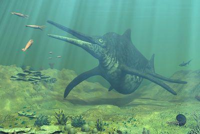 ショニサウルス