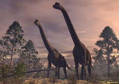 ブラキオサウルス・アルティトラクス