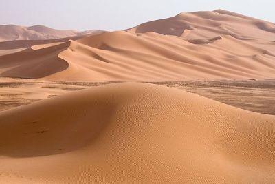 宇宙に存在する星の数は地球上の砂より多い