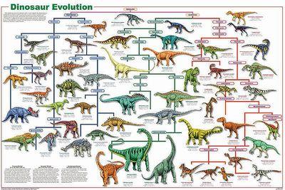 恐竜の種類