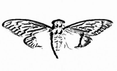 Cicada3301の謎