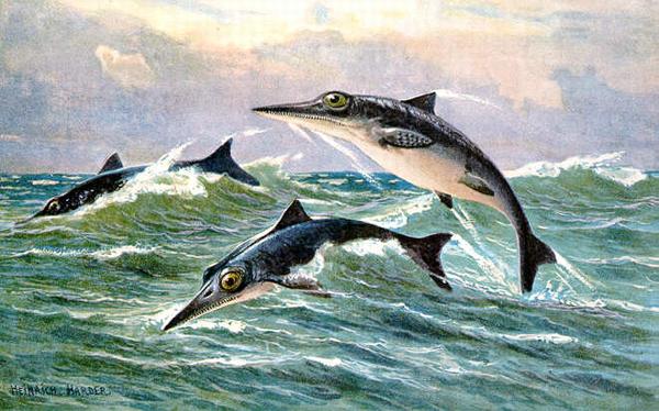 絶滅した太古のハンター!魚竜の生態と絶滅の秘密に迫る