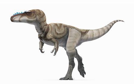 アレクトロサウルス