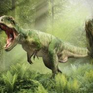 恐竜 最強