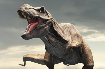ティラノサウルス 前足