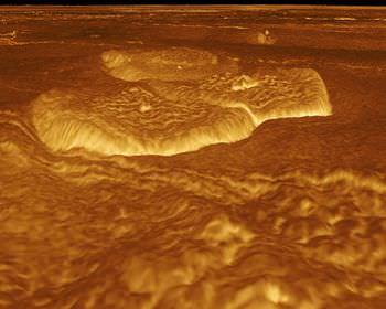 金星の重力