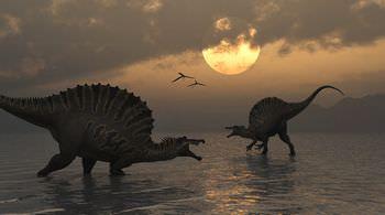 スピノサウルスの名前の由来は?