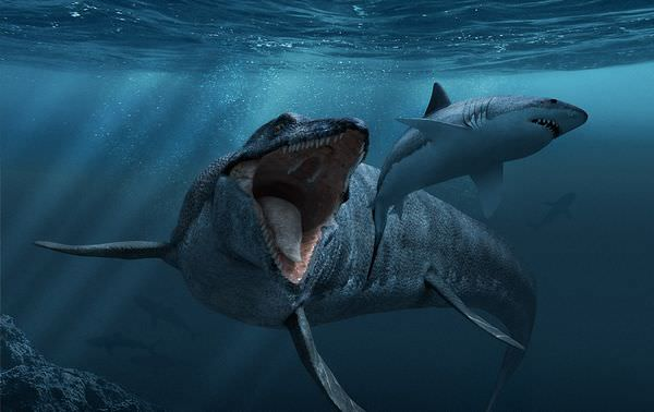 最強の海棲爬虫類モササウルス!その大きさや生態に迫る