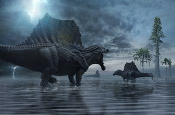 スピノサウルスの帆は何のため?