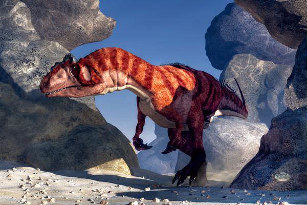 ジュラ紀最強のアロサウルス!幻の名前やその身体能力に迫る