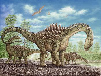 アンペロサウルス