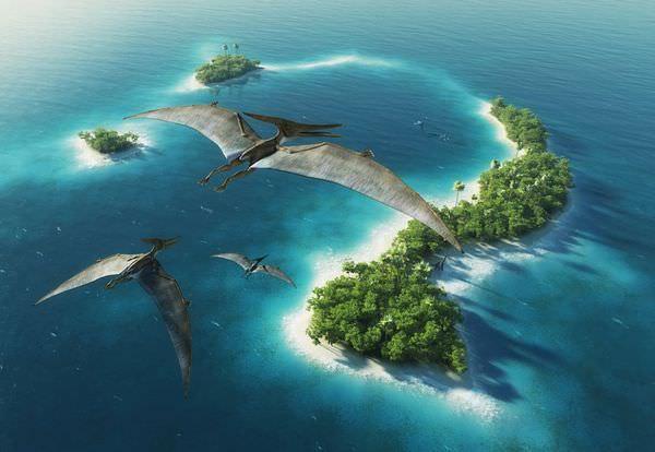 プテラノドンの生態と絶滅の秘密!飛べなかったって本当なの?