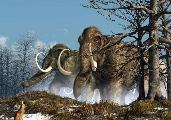 マンモスは復活するのか?絶滅の理由とクローン研究の現在
