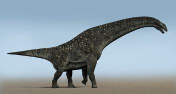 ティタノサウルスとは?