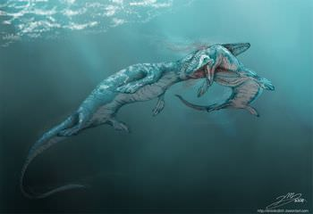 モササウルスの化石には襲われた痕が多い?