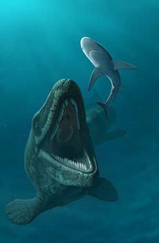 モササウルスの食性と生態的地位
