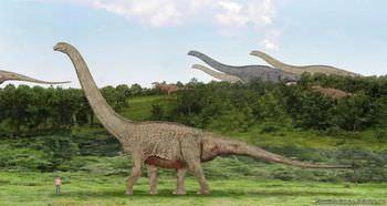 繁栄を極めたティタノサウルス類