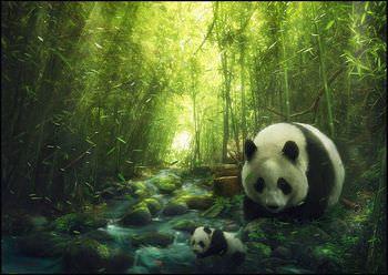 ギガントピテクス 絶滅 パンダ