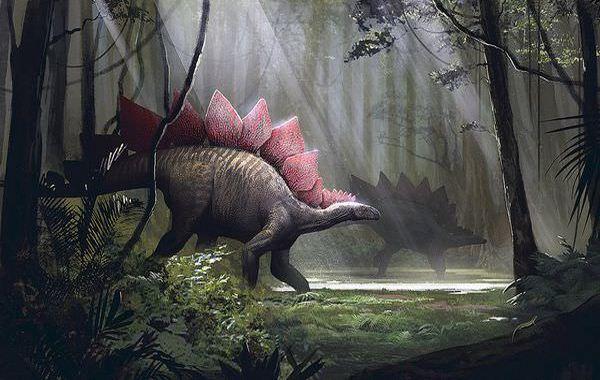 草食恐竜ステゴサウルス!ゴジラのモデルで脳が2個って本当?