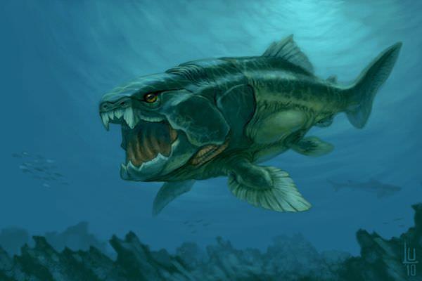 デボン紀最強のダンクルオステウス!噛む力やサメとの関係とは?