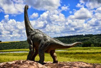 ブラキオサウルス 名前の由来