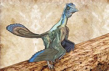 始祖鳥 恐竜