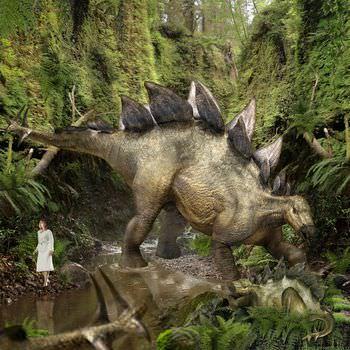 ステゴサウルス 大きさ