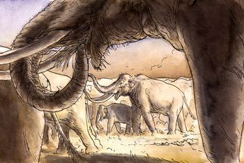 マンモス 祖先