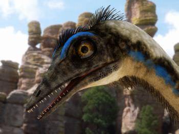 始祖鳥 脳