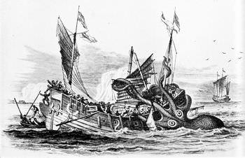 オンゴラ沖で目撃されたクラーケン