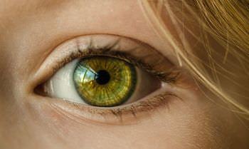 目の認識速度の違い説