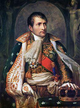ナポレオン 癇癪