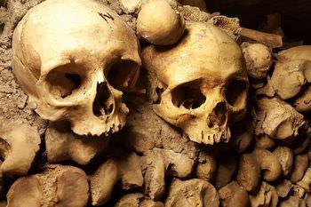 シェイクスピア 頭蓋骨
