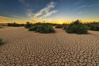 地球温暖化 現状